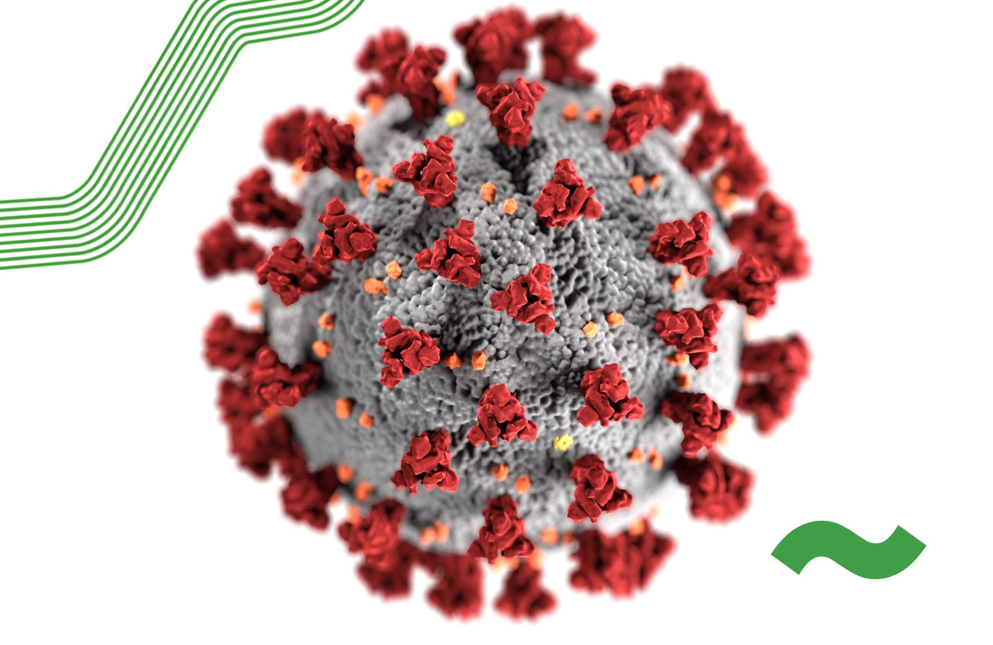 Hosting in the coronavirus era: face masks, diesel, and food supplies